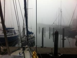 Foggy morning departure