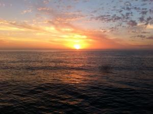 Croppies Sunset
