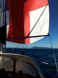 Freespirits Spinnaker sees the light of day!