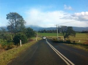 Heading towards Liffey Falls